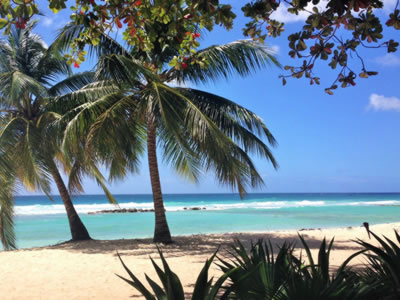 Holiday Destinations | Barbados