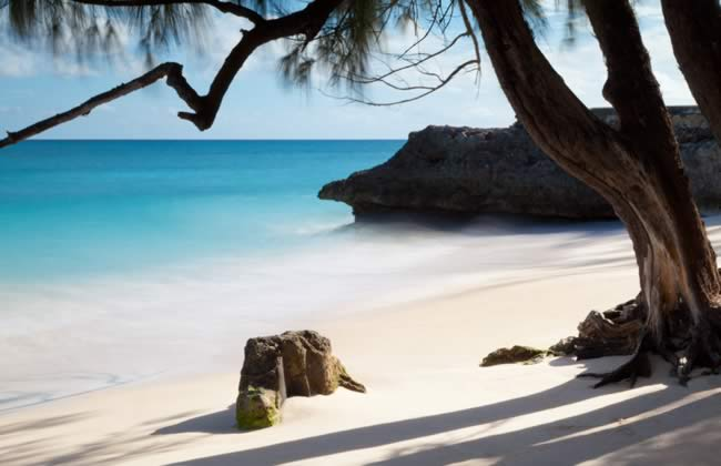 Hotels in Tours in Barbados