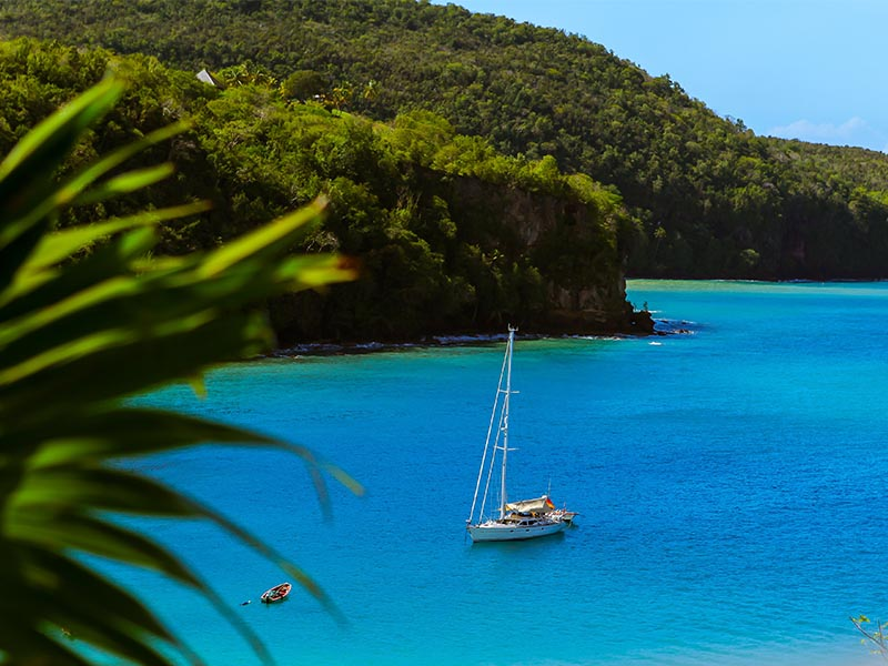 Hotels in Tours in Saint Lucia